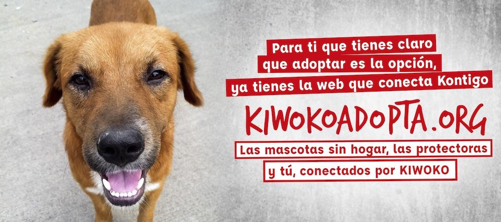 Adopta A Una Mascota